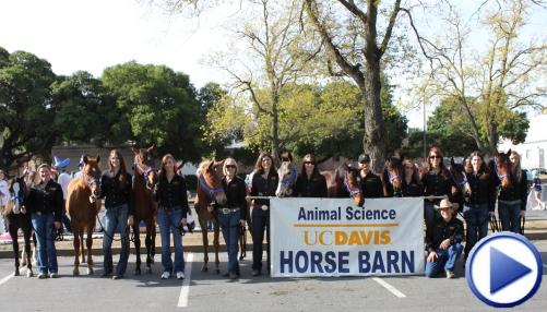Equestrians at UCD