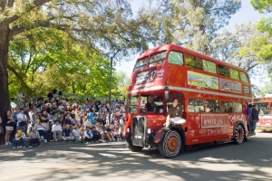 A Unitrans bus passes the grandstand during the Picnic Day Parade at UC Davis.